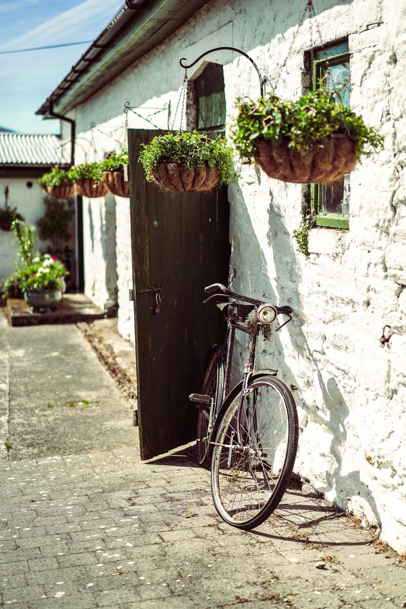 Irland 38 | Vor ein paar Monaten waren wir auf einer wirklich unglaublichen Reise. Daher wird es mehr als Zeit euch von unserem Wochenende in Irland zu berichten! Gemeinsam mit Kerrygold ging es für uns nach Cork ... unser Ziel? Das Weidemilch-Prinzip kennenzulernen und das eben nicht auf dem Papier sondern vor Ort.