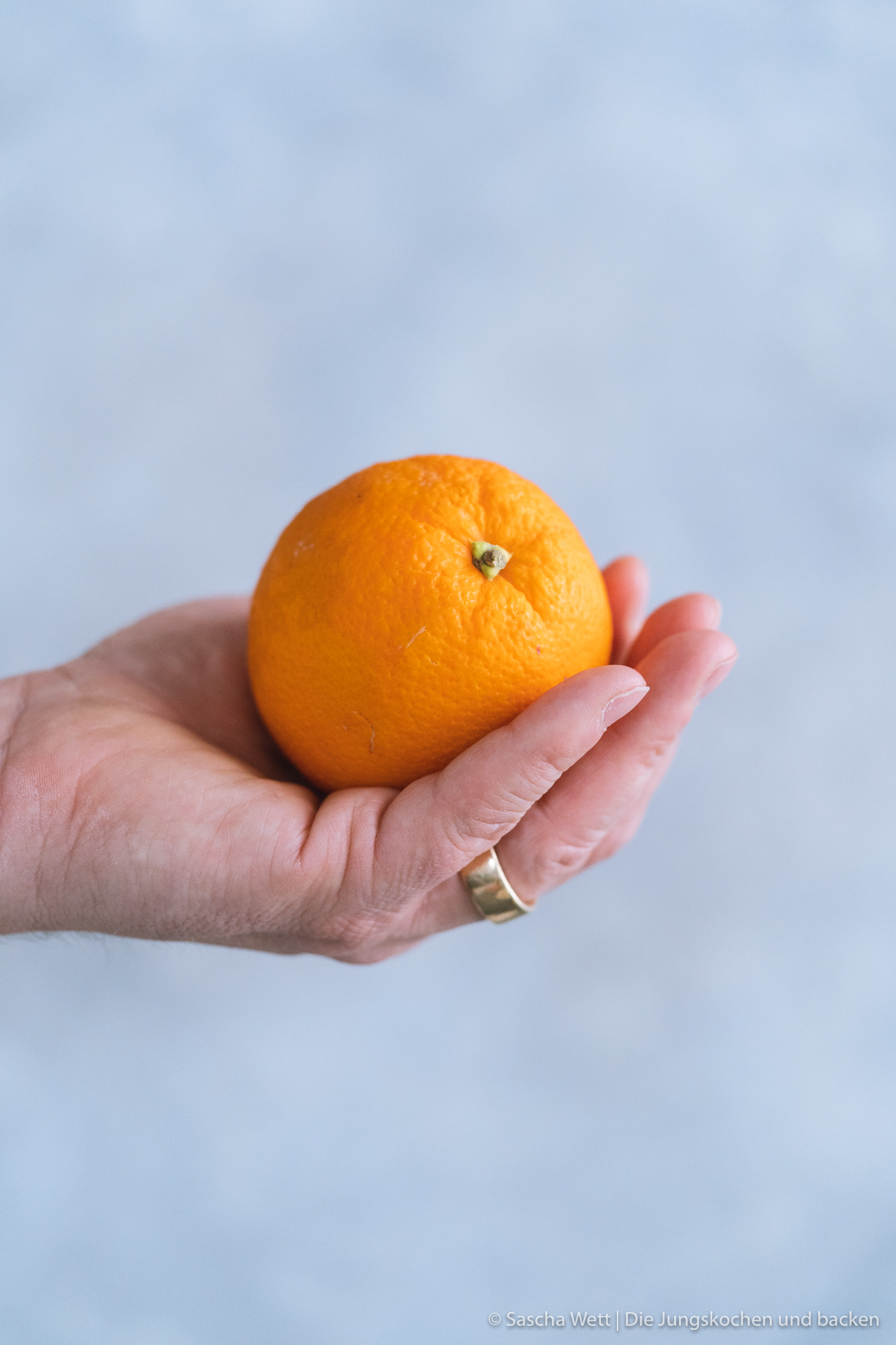 Orangenkuchen_Minzstreusel_Rezept-10