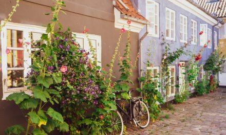 Ein Wochenende in Aalborg | Tour-Guide